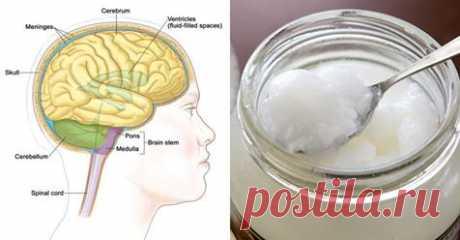 У пациентов с болезнью Альцгеймера почти сразу улучшается состояние после приема 4 столовых ложек кокосового масла - Советы для женщин