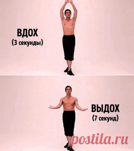Данное упражнение за 2 минуты в день убирает жир на животе. Наглядно показываю принцип его выполнения. | ЗОЖ - смысл популяции | Яндекс Дзен