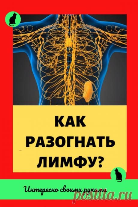 Как разогнать лимфу? Действенные приемы и способы!