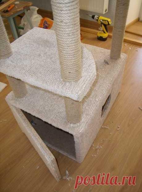 Дом для кошки своими руками (как и из чего сделать, фото)