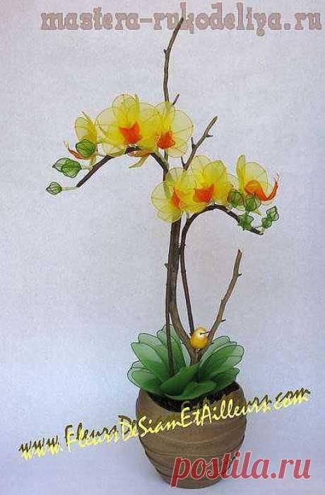 Мастер-класс: Орхидея Фаленопсис из капроновых колготок