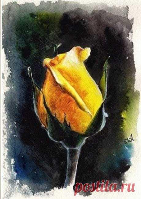 Рисуем желтую розу на черном фоне