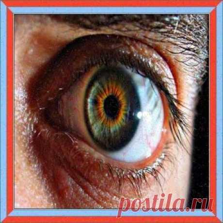Пять способов узнать, что у вас катаракта | Жажда Здоровья и Спорта | Яндекс Дзен