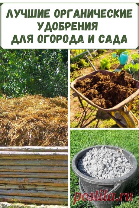 Использование удобрений для огорода и сада позволяет не только повысить урожайность, но и улучшить вкусовые характеристики. Для Вас список лучших органических удобрений для огорода.