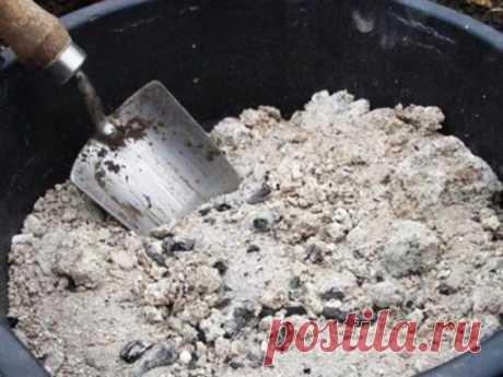 Зола на дачном участке: как можно использовать «печное золото»