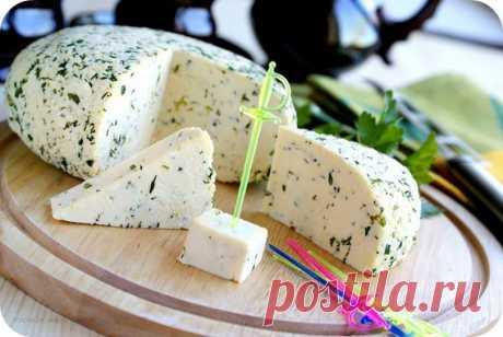 Уже давно не покупаю сыр, а готовлю сама! — Мой милый дом