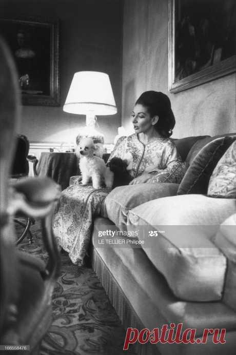 rendezvous-with-maria-callas-at-home-in-paris-maria-callas-chez-elle-picture-id166558476 (1361×2048)