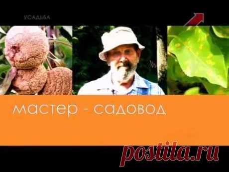 Мастер садовод.Николай Фурсов.Заболевания груш и яблонь.Плодовые деревья.