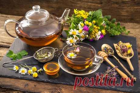 Fito - La farmacia - los secretos de las plantas medicinales