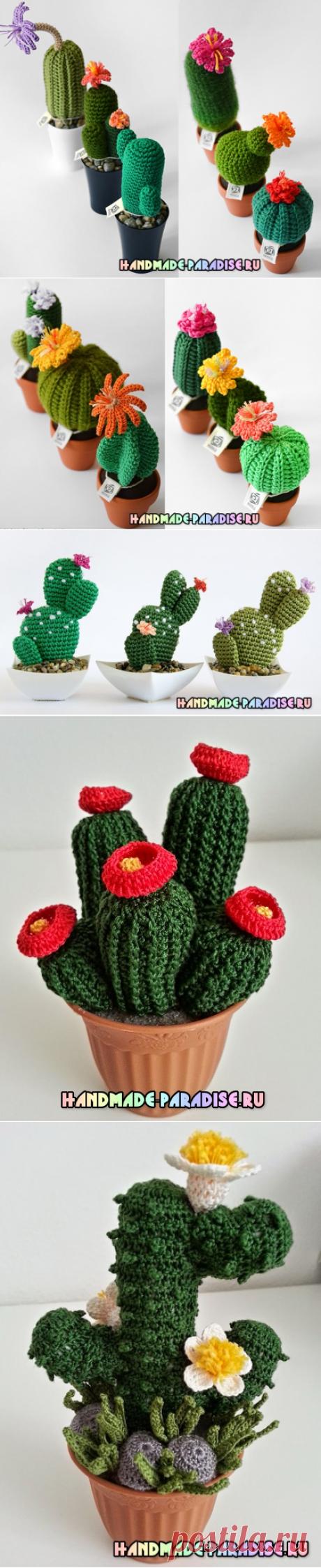Цветущий вязаный кактус. Схемы - Handmade-Paradise