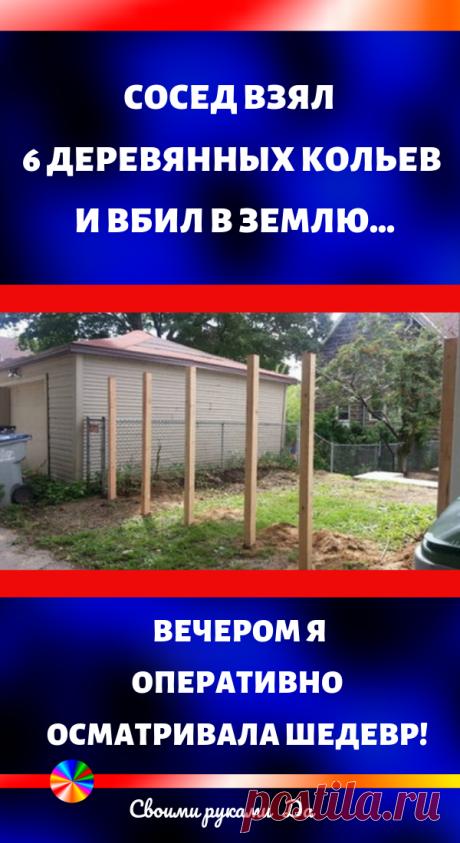 Сосед взял 6 деревянных кольев и вбил в землю… Вечером я оперативно осматривала шедевр!
