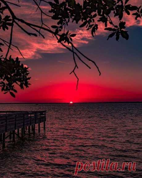 Присядет вечер незаметно На горизонта ровный край. Смотри, какого небо цвета! Не радость ли? Запоминай! * * * * * * Терентий Травник