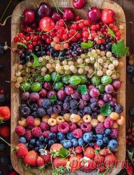 Лето Было, Будет, Есть! Пятьдесят оттенков ягод