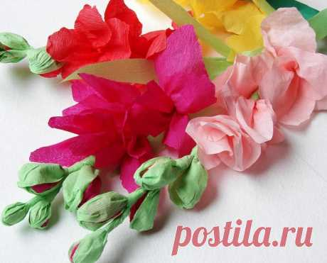 How to make flowers from paper with own hands