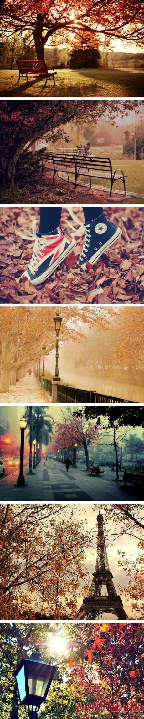Каждая пора года по-своему прекрасна. Поэтому радуйся когда придёт осень и наслаждайся её удивительными красками