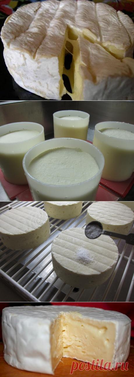 Рецепт камамбера  Камамбер с его красивым белым халатом и мягкой, почти сочащейся текстурой - сыр мирового класса. В этом рецепте мы проведем вас через процесс изготовления, а затем сосредоточимся на том, что нужно для того, чтобы на поверхности выросли формы для получения действительно спелого сыра камамбер.