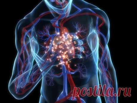 Повышенное давление: подавленная агрессивность Кровь- материальный символ жизни и проявления индивидуальности В любой капле этого «сока жизни» отражается весь человек. По одной капле крови можно поставить полный диагноз.  Кровяноедавлениевыражает динамику человека.Давление возникает извзаимодействиякрови и стенок сосудов, по которым она
