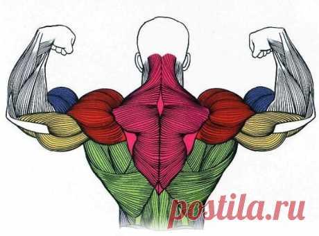 С чем связана боль в мышцах после тренировки?
