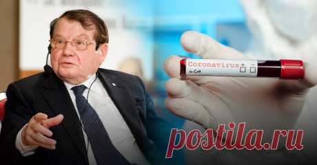Люк Монтанье предположил, как появился коронавирус   Листай.ру ✪