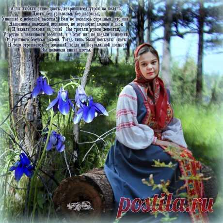 Синие цветы - ~ Плэйкасты ~ Beesona.Ru