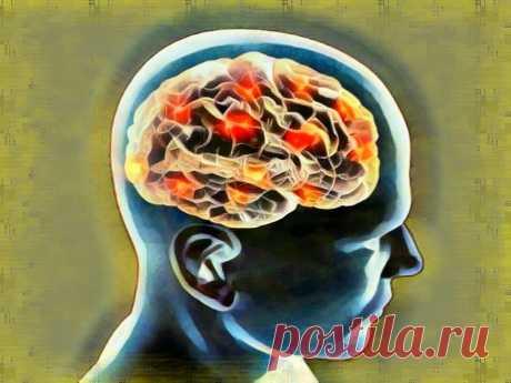 5 вредных привычек, ведущих к раннему старению мозга   Здоровый Дух   Яндекс Дзен