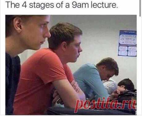 The four stages of nine am lecture !  #girls #boys #funny #aww #students #gagbee