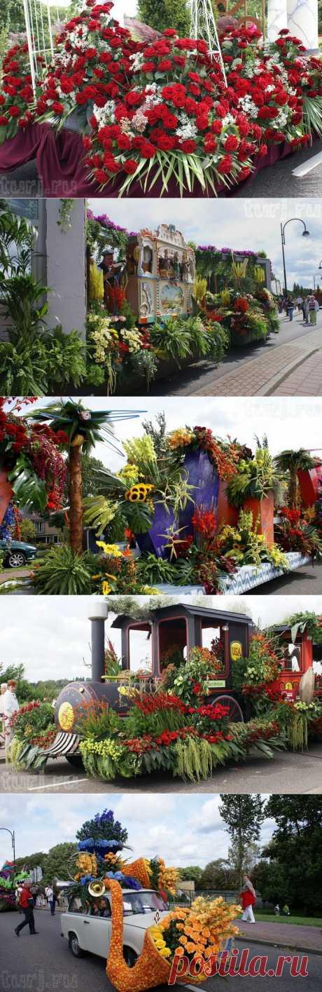 Нидерланды, Аалсмеер: парад цветов в королевстве тюльпанов.