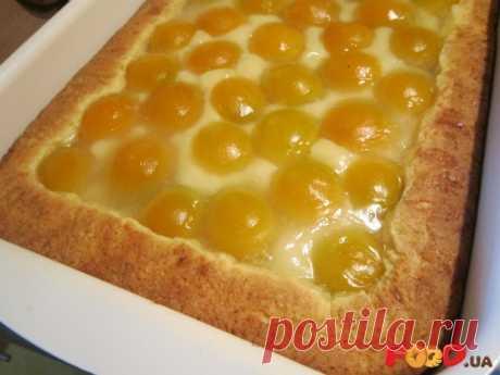 Творожный пирог с фруктами | Nika_G - Кулинарные рецепты на Food.ua