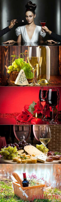 Как научиться правильно выбирать вино.