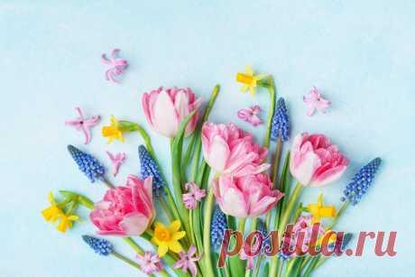 Каждый цветок в букете что-то значит. Какой тайный смысл несут цветы? Разбираемся в преддверии 8 Марта