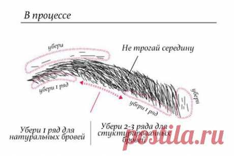Ideal eyebrows of the house in 3 minutes: just follow the instruction!