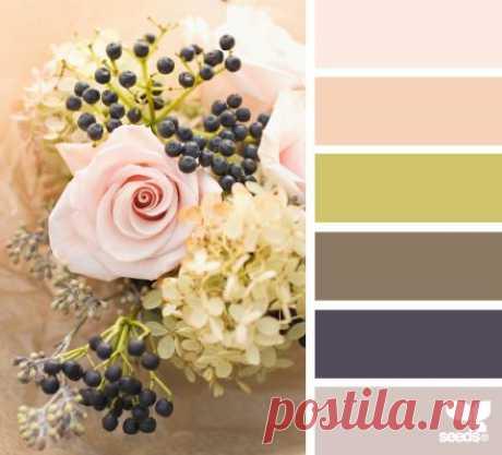 Design Seeds® | for all who ❤ color Правильное сочетание цвета