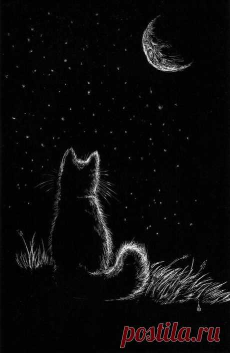 Scratch board test. Nothing fancy. About 30 minutes. Clay Scratch board. Character is Key and she is © to me. Cat who loved the Moon
