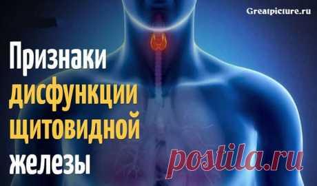 Признаки дисфункции щитовидной железы, которые Вы игнорируете каждый день Признаки дисфункции щитовидной железы, которые Вы игнорируете каждый день.Именно они могут свидетельствовать о нарушении функции