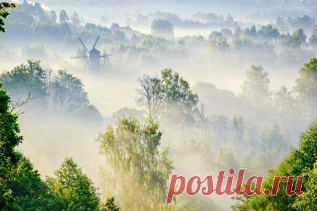 Вспоминаем лето вместе с Павлом Деминым (nat-geo.ru/community/user/223115/) и его утренней фотографией долины реки Истра в Подмосковье. Хорошего дня!