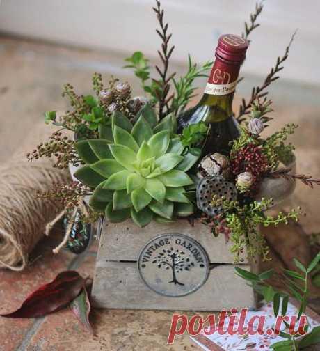 (54) Pinterest - Стильный вариант подарка на 23 февраля. @lathyrus.lavka   box
