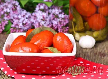 Соленые помидоры рецепт: полезные советы