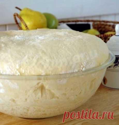 Быстрое тесто для пирогов и плюшек рецепт с фото пошагово - 1000.menu