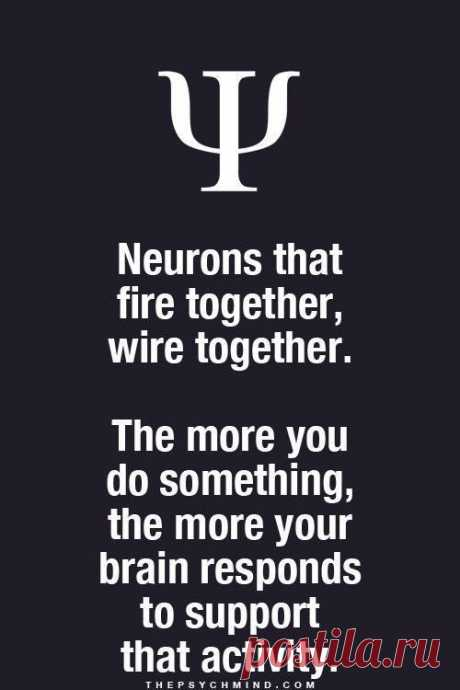 Neurons that fire together, wire together