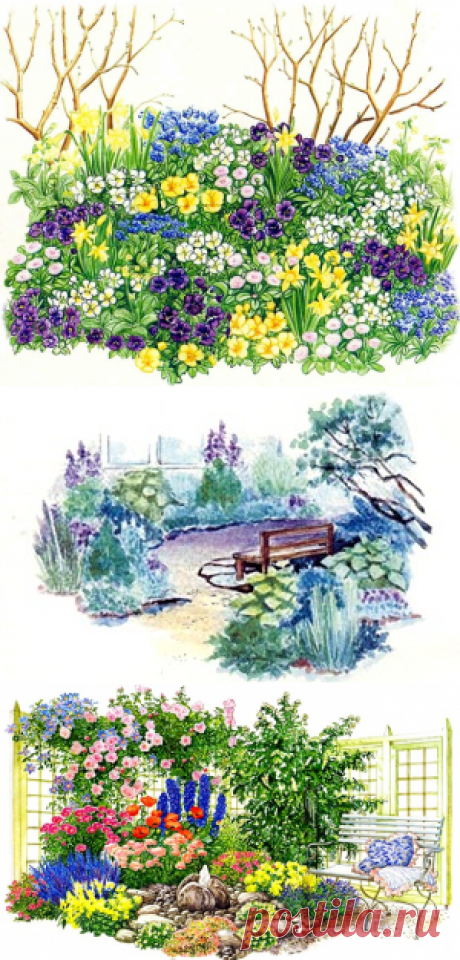 Schemes of flower beds for every taste — 6 hundred parts