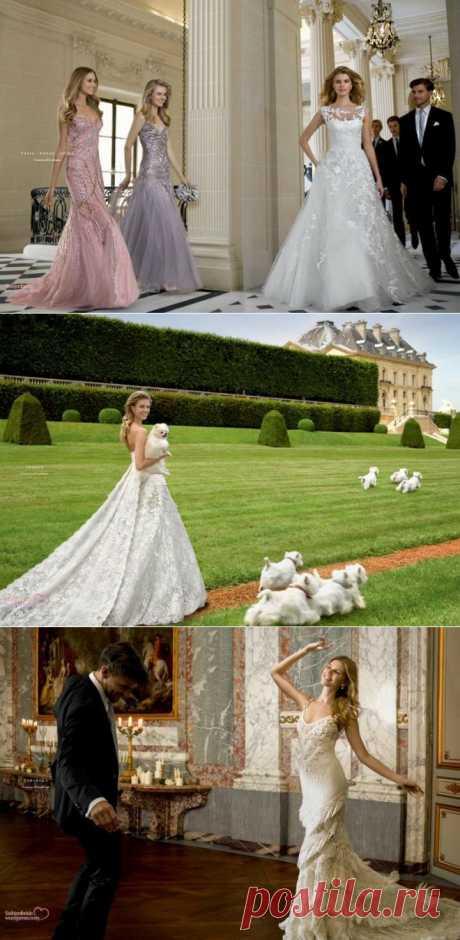 Новая коллекция свадебных платьев от марки Pronovias 2014