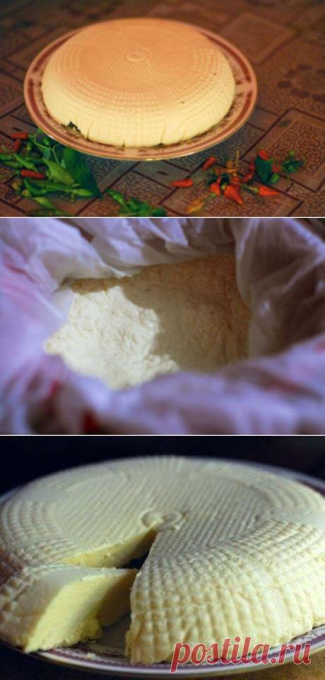 Домашний сыр, как адыгейский В прошлом посте меня очень многие спрашивали рецепт приготовления домашнего сыра. Что делать сыролюбу??? Только делать свой домашний сыр. Я делаю три разных вида сыра — типа адыгейского, панир (индийский домашний сыр — блюдо тандури тика панир — мммм!!!! вкуснотища) и домашнюю брынзу. | японские узоры спицами со схемами и описанием на русском схемы крючком модели