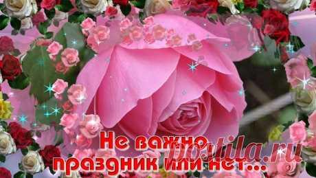 Розовое пожелание !