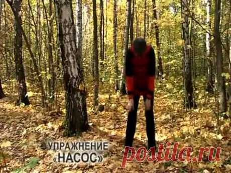 УПР.№3--Дыхательная гимнастика Стрельниковой от всех болезней | Bodymaster О спорте и фитнесе | Яндекс Дзен