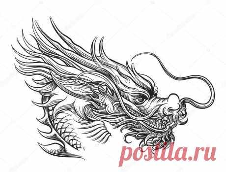 Картинки для срисовки драконов (31 фото) ⭐ Забавник
