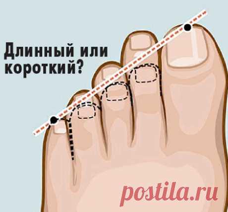 Как определить характер по ногам (тест) — Болтай