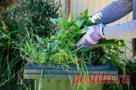 Утилизация растительных и кухонных отходов на участке — ничего лишнего! Личный опыт. Фото — Ботаничка.ru