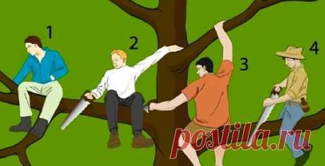 Выберите, кто глупее всех на дереве - ответ раскроет некоторые черты вашей личности