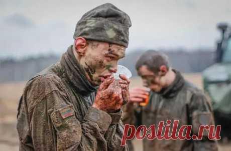 В Литве показали фотографии с конкурса о популяризации службы в литовской армии - Все об оружии - медиаплатформа МирТесен