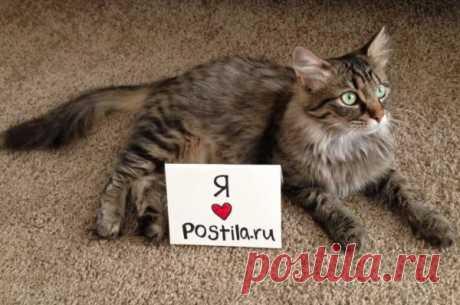I ❤ Postilu